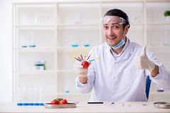 Male nutrition expert testing food products in lab stock images