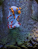 Male Ocellated Turkey Royalty Free Stock Images