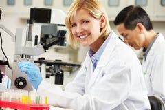 Male och kvinnliga forskare som använder mikroskop i laboratorium Royaltyfri Bild