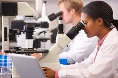 Male och kvinnliga forskare som använder mikroskop i laboratorium Arkivbilder