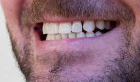 Male open mouth with teeth Royalty Free Stock Image