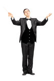 Male orchestra conductor directing with baton. Full length portrait of a male orchestra conductor directing with baton isolated on white background Stock Image