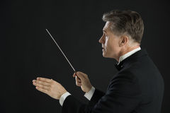 Male Orchestra Conductor Directing With His Baton. Side view of male orchestra conductor directing with his baton against black background Stock Photos