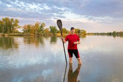 Male paddler with a long stand up paddle. Senior male paddler with a long stand up paddle standing in a calm lake, summer scenery Royalty Free Stock Photos