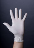Male palm in latex glove Royalty Free Stock Images