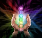 Male Healer Sending Chakra Healing Energy. Male parallel hands facing upwards against a multicoloured background of energy and the Seven Chakras floating between royalty free stock photo