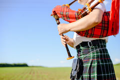 Male playing Scottish traditional pipes on green Royalty Free Stock Photo