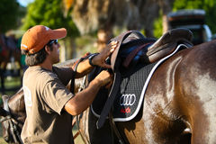 Male Polo Player Stock Photography