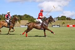 Male Polo Player. From the barbadian team at the Polo World championships in Barbados. Captain Leslie St. George Cheape from the England Polo Team racing with stock image