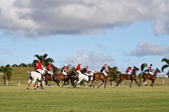 Male Polo Player. From the barbadian team at the Polo World championships in Barbados. Captain Leslie St. George Cheape from the England Polo Team racing with royalty free stock photos