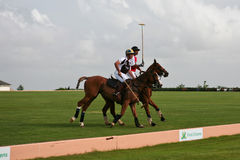 Male Polo Players. From the jamaican and english team at Barbados Open on Sunday, April 3, 2011 at 15:15at Clifton Polo Ground. England won 7-4 Stock Image