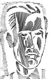 Male Portrait. Sketch of a Male Person Royalty Free Stock Images
