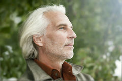 Male portrait with white beard Stock Photo