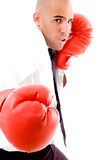 Male Posing In Boxing Gloves Stock Images