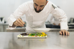 Male professional chef cooking. Royalty Free Stock Photos
