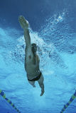 Male Professional Swimmer In Pool stock photos