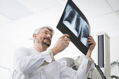 Male Radiologist Analyzing Chest X-ray In Examination Room Stock Photography