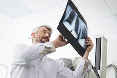 Male Radiologist Analyzing Chest X-ray Report In Examination Roo Royalty Free Stock Image