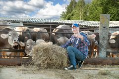 Male rancher in a farm Stock Photography