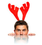 Male reindeer Royalty Free Stock Photos