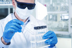 Male researcher at his workplace in the laboratory. Stock Photography
