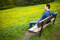 Male resting on the bench Stock Image