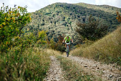 Male rider cyclist riding uphill on a forest trail. Privetnoye, Russia -  September 22, 2016: male rider cyclist riding uphill on a forest trail during Crimean Royalty Free Stock Photography