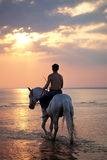 Male riding a horse on the background of the sea Stock Images