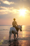 Male riding a horse on the background of the sea. The image of a male riding a horse on the background of the sea Royalty Free Stock Photography