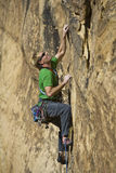 Male rock climber. Royalty Free Stock Image