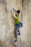 Male rock climber. Stock Images