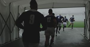 Male rugby players running together in a row at the entrance of stadium 4k. Rear view of diverse male rugby players running together in a row at the entrance of stock video