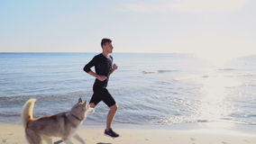 Male runner and his husky dog jogging on the beach slow motion stock video footage