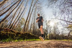 Male runner on nature. Road in misty forest full of pleasure warm light Stock Photography