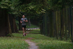 Male Runner Running City Park. Young Man Running In Wooded Forest Area - Training And Exercising For Trail Run Marathon Endurance - Fitness Healthy Lifestyle Stock Image