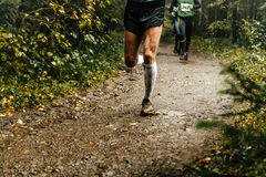Male runner runs. Marathon forest trail feet in mud Royalty Free Stock Images