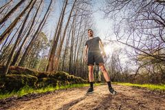 Male runner standing on nature. Road in misty forest full of pleasure warm light Stock Image