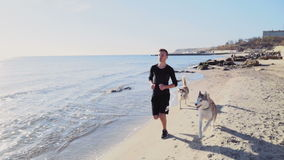 Male runner and two husky dogs jogging on the beach slow motion stock video