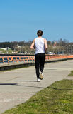 Male running on the shoreline. Athletic young male running on the shoreline. From the back Royalty Free Stock Images