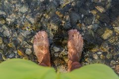 Male`s foot in cold clear water in the Lake maggiore royalty free stock photo