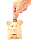A male's hand putting a coin to piggy bank. With white background Royalty Free Stock Image