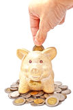 A male's hand putting a coin to piggy bank Stock Images