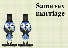 Male same sex marriage Royalty Free Stock Photo