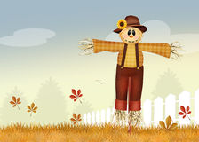 Male scarecrow Stock Image