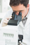 Male scientific researcher using microscope in laboratory. Close up of a male scientific researcher using microscope in the laboratory Royalty Free Stock Images