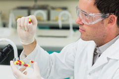 Male scientist analyzing pills in the laboratory. Close up side view of a male scientist analyzing pills in the laboratory Stock Image