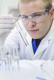 Male Scientist or Doctor Test Tube Laboratory Royalty Free Stock Images