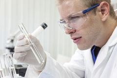 Male Scientist or Doctor With Test Tube In Laboratory. A male medical or scientific researcher or doctor looking at a test tube of clear liquid in a laboratory Stock Photography