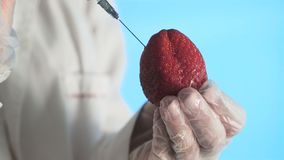 Male scientist hands with syringe injecting substance into Strawberry