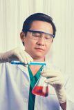 Male scientist holds and examine samples Stock Image